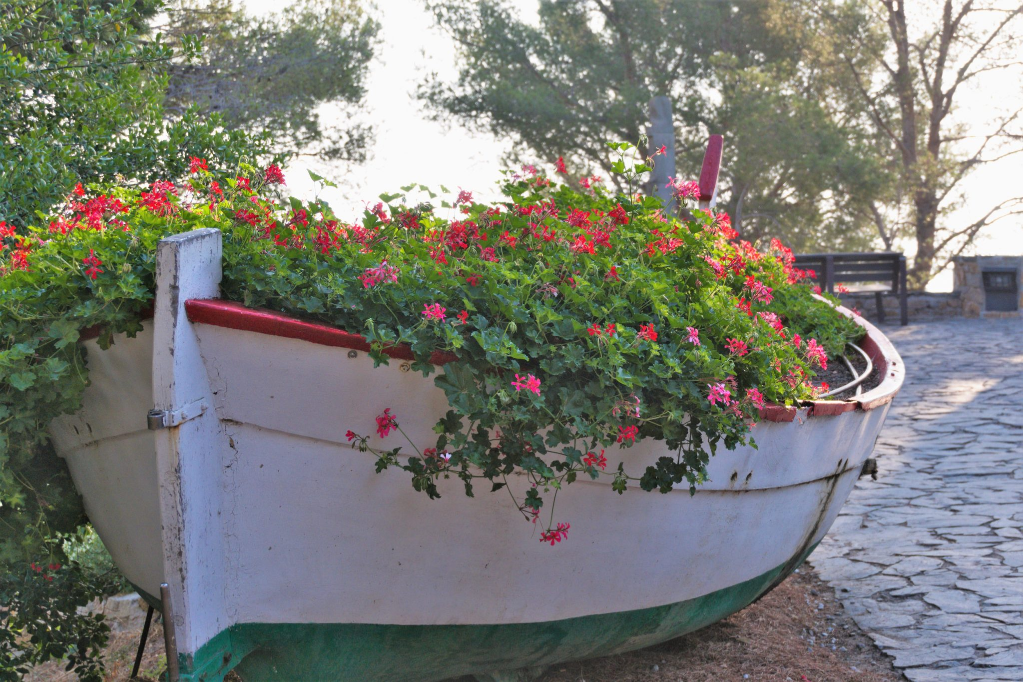flower bed tips