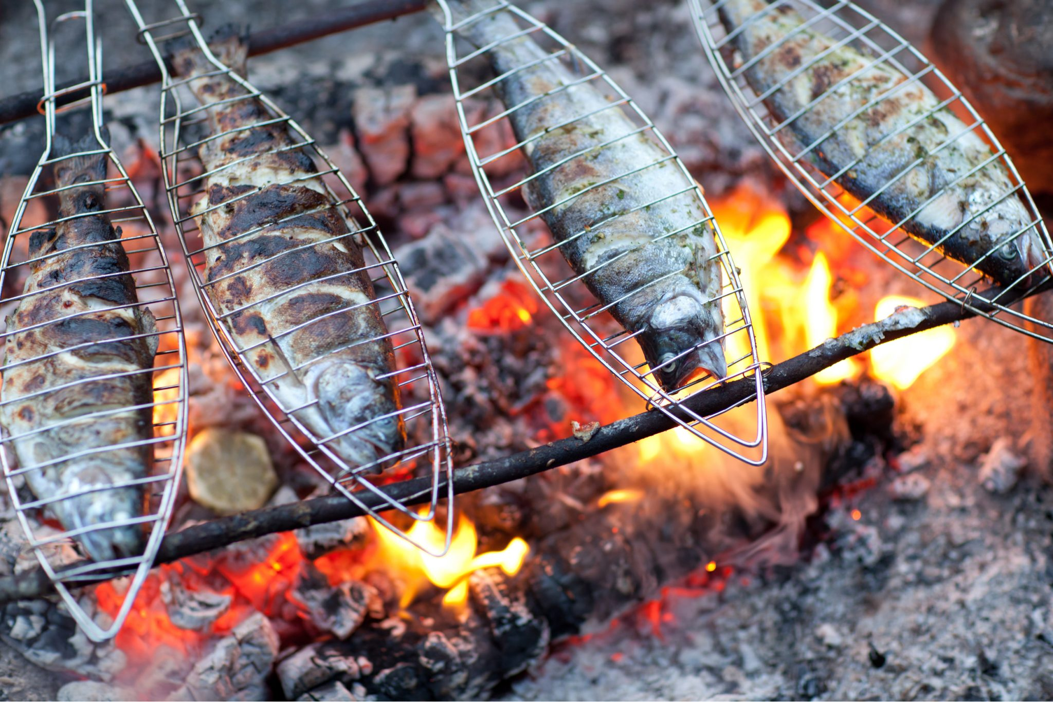 Backyard Campfire Cooking Tips