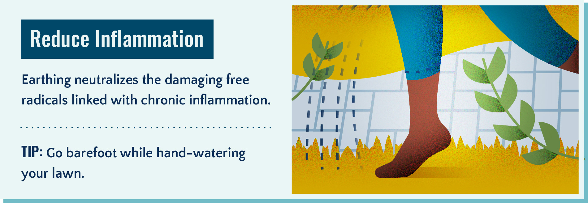 Earthing helps reduce inflammation