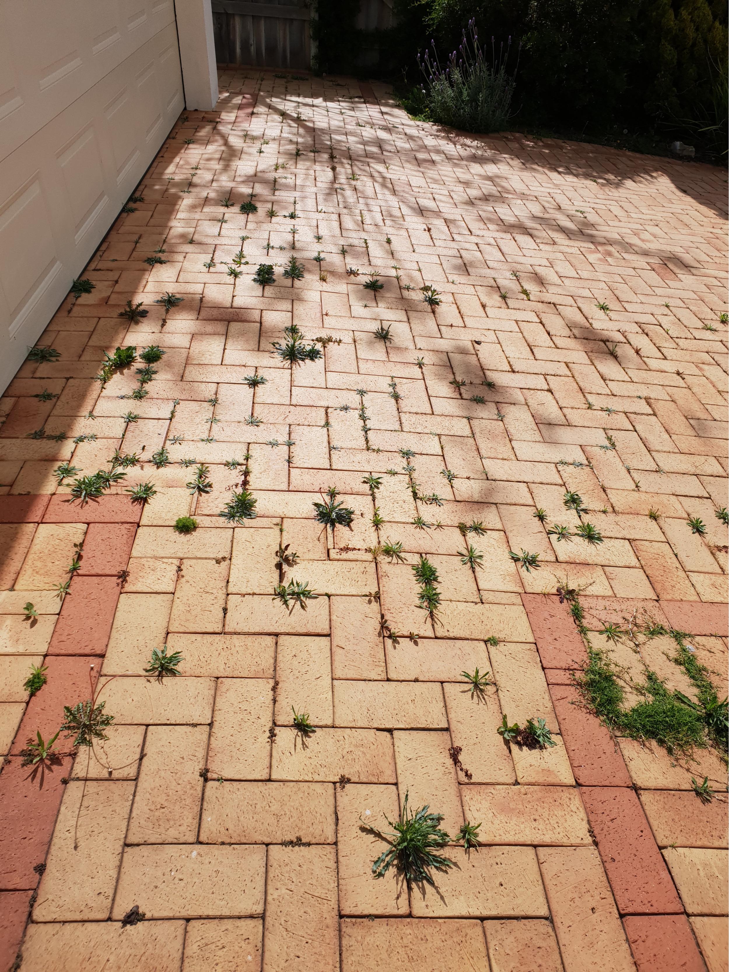 Remove Weeds Between Pavers Ideas