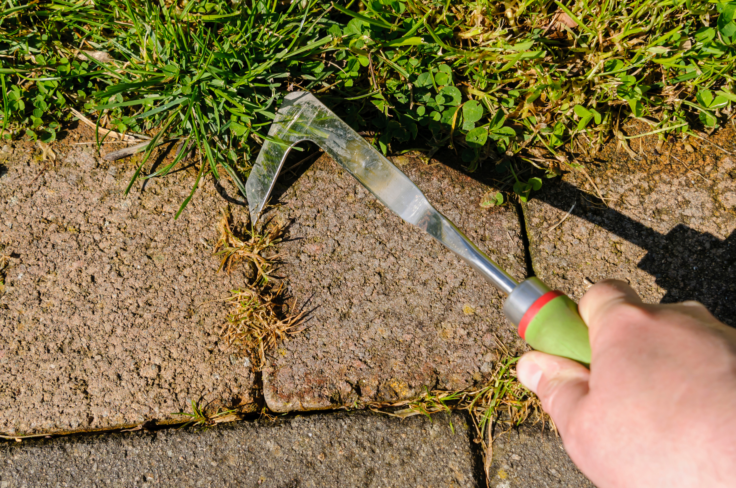 Remove Weeds Between Pavers