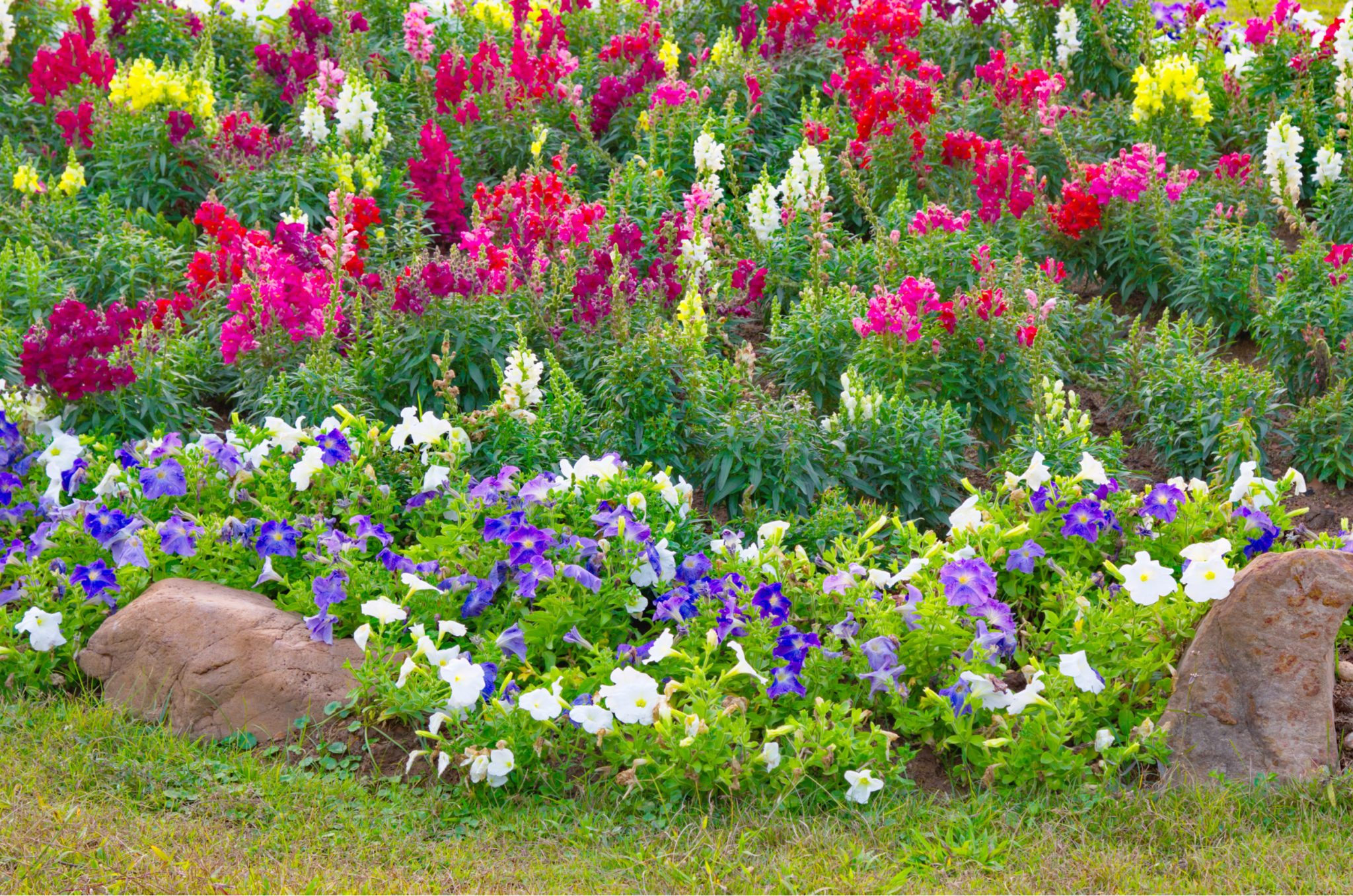 botanical gardens in california