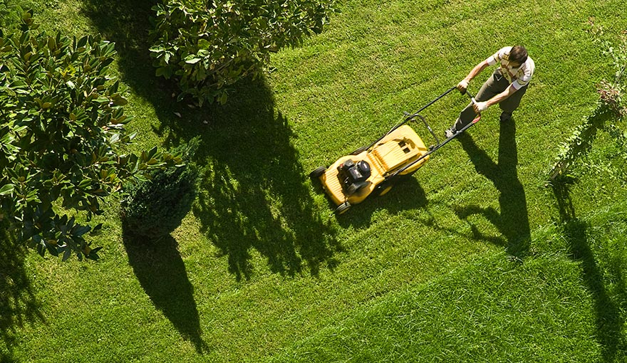 Aerial view of person mowing a lawn