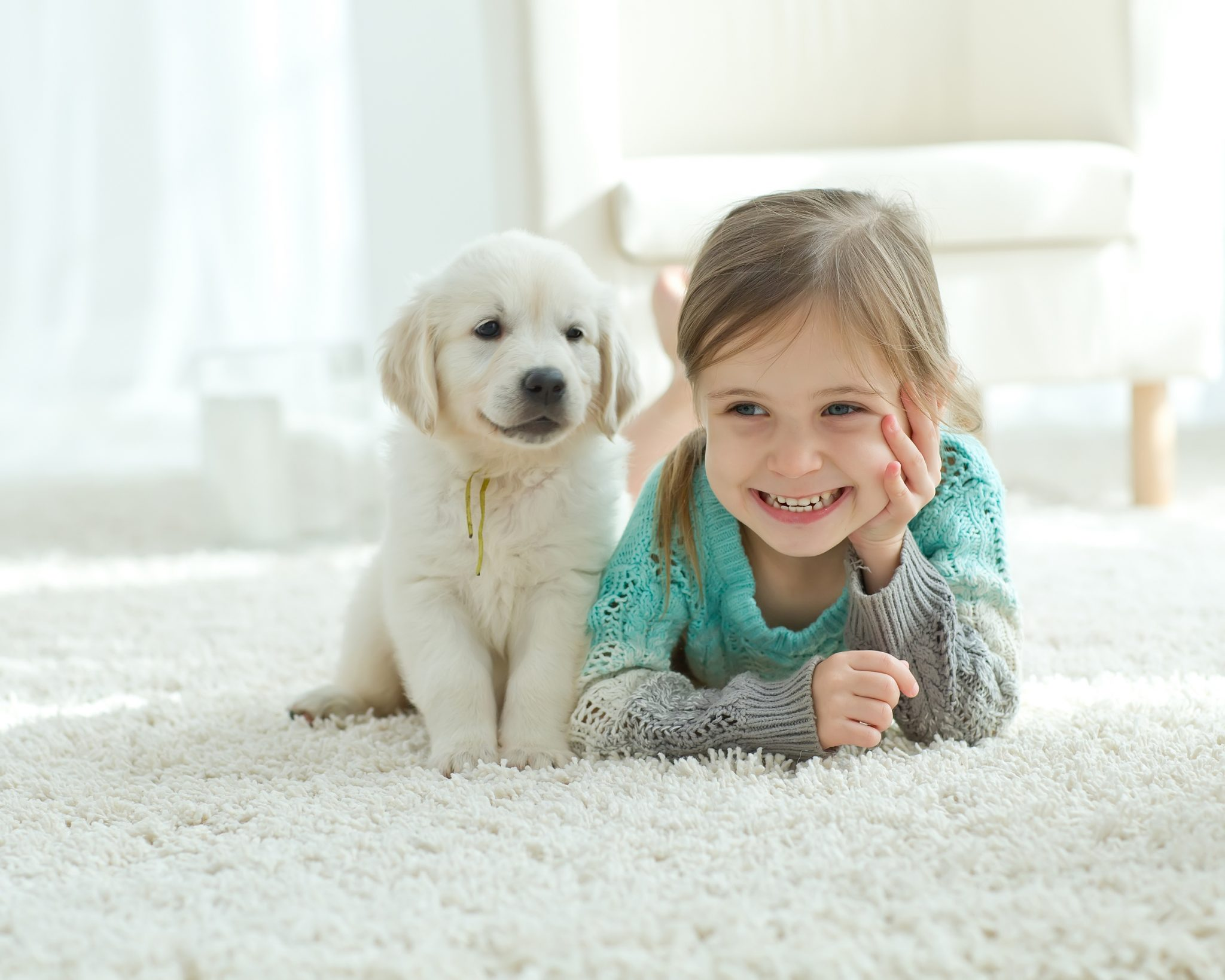 How to Remove Urine Odor from Carpet