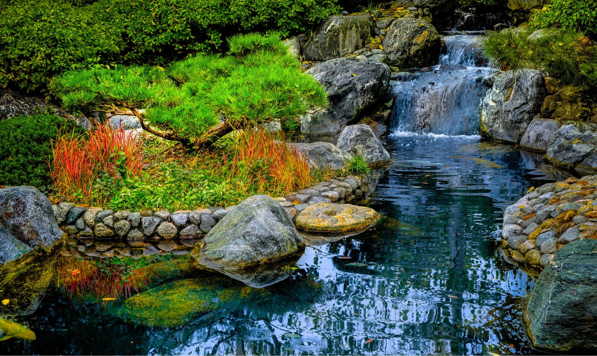 Top Landscape Designs in San Diego