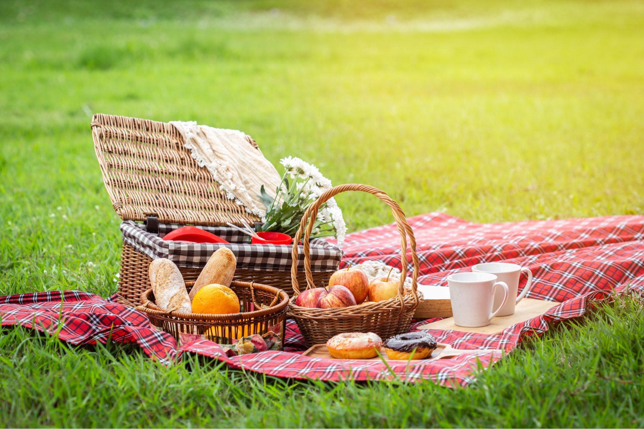 Romantic Picnic ideas tips