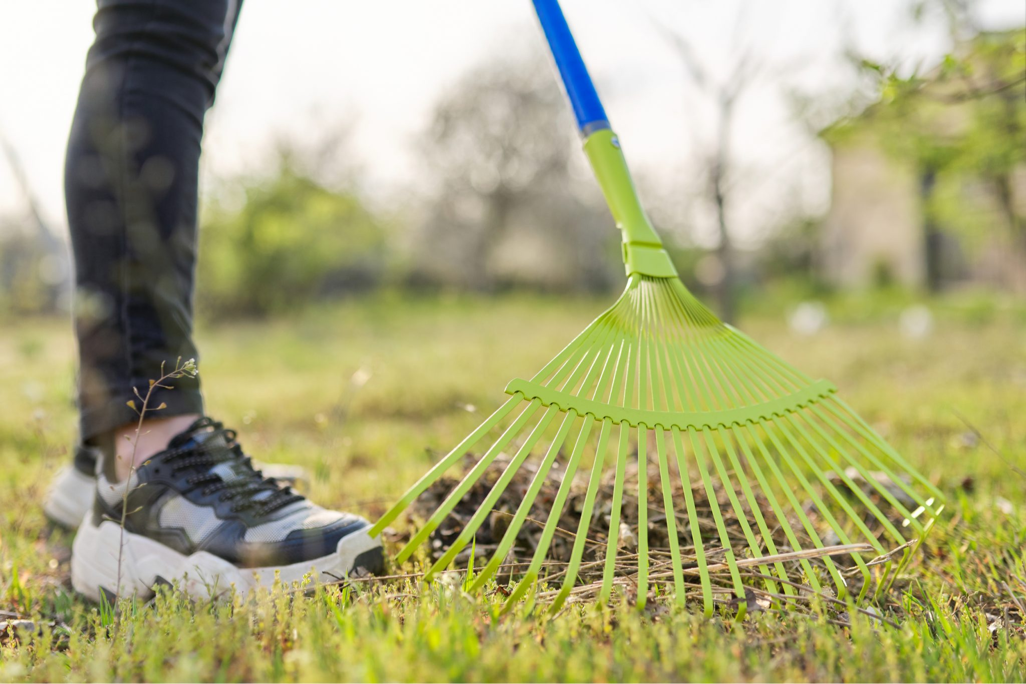 patchy grass solutions