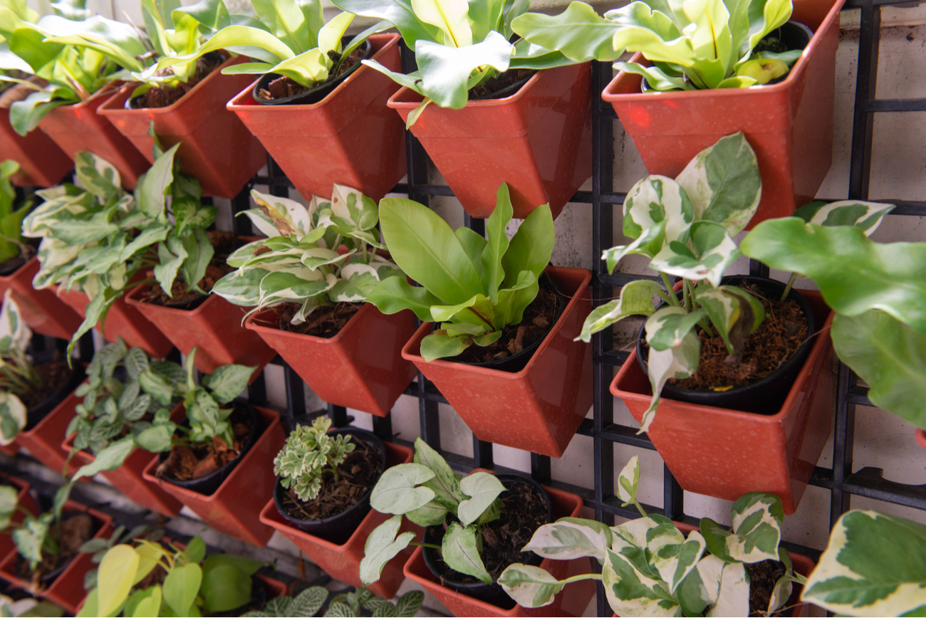 Wall-Mounted Grid with Planters